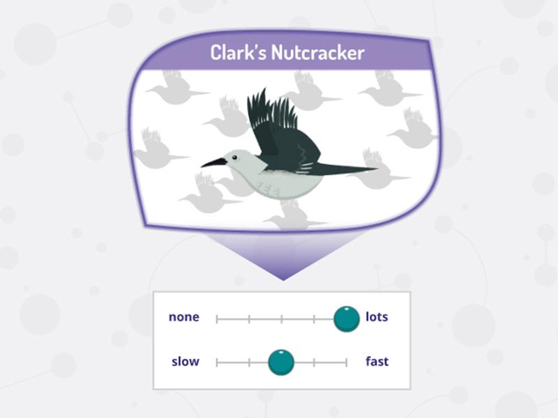 Game Customization Screen - Predator  kids game design ui ux