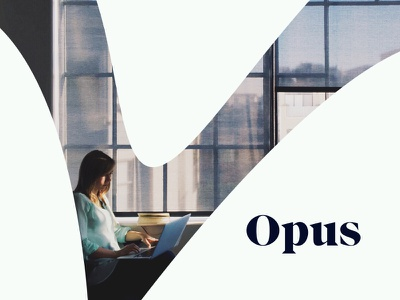 Brand Elements in Action branding identity photography swoop organizational consultation consulting focus lab opus