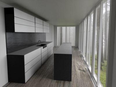 Kitchen in the woods   3D