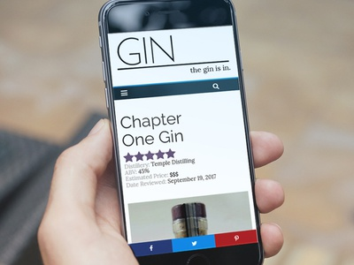 The Gin is IN, Mobile Experience responsive web design mobile