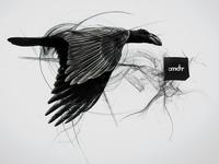 Crow Styleframe