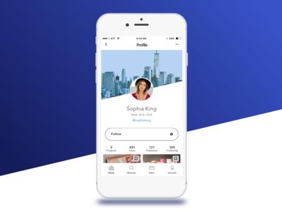 Mobile User Profile
