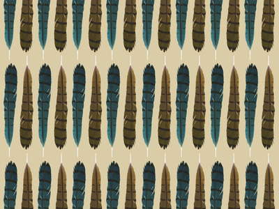 FEATHERS - Beginning patterns feathers repeat