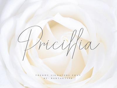 Pricillia font awesome type logo brand lettering branding rantautype font design font