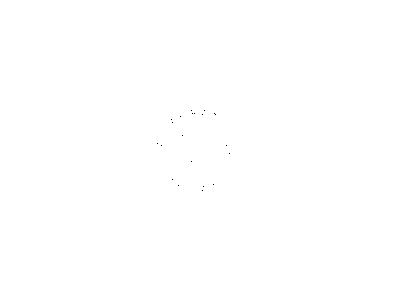 lly. Fashion Flat Logo Visual