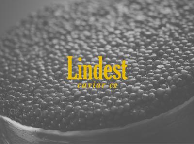 Lindest Caviar Logo