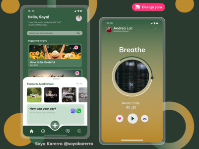 The Meditation App meditation app mobile app interface uidesign uiux