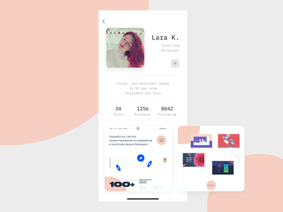 Front-End Developer Profile minimal clean designer developer portfolio profile flat branding ui design