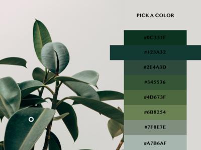 #DailyUI #UI #060 #colorpicker #color