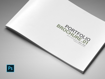 Portfolio Brochure ui branding photoshop minimal photographer photo template portfolio fashion elegant designer design clean business brochure booklet book architecture a4