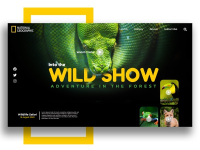 Nat Geo UI animal art wild animal facebook minimal uidesign uiux national park wildshow ux ui snake nature national geographic
