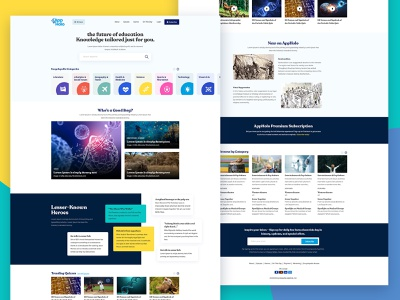 Layout concept for the University students layout design new professional clean edication website covid dna university psd design psd website design web layout design ui ux ui web website layout education