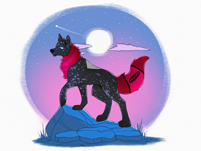 Stargazer illustration