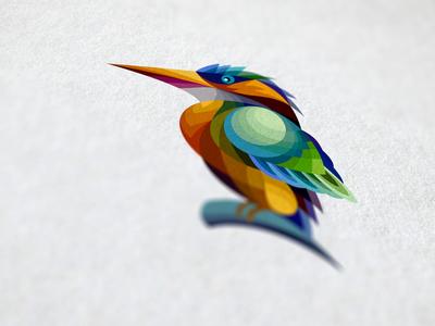 Kookaburra bird colour icon illustrator viet nam texture kookaburra
