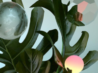 Plants and spheres