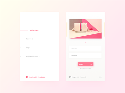 Left or Right ? shadow bag photo pastel slider facebook fields gradient mobile app page login