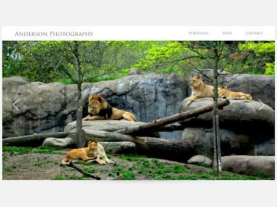 Landing Page ui design ui lions wildlife dailyui photography webdesign landing page landing