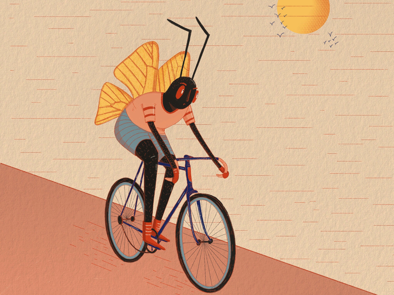Cyclist insect design characterdesign insect creative procreate ipad 2d illustration drawing