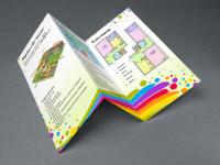 """Rainbow"" Tri Fold Brochure"