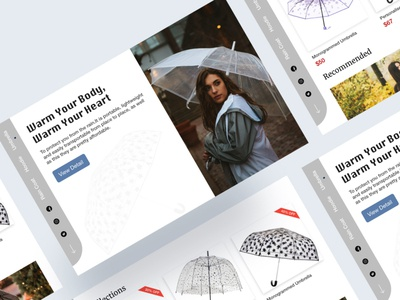 Rainy Season Product web design ux ui