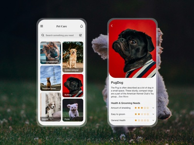 Pet Care app design ux ui