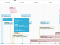 Patient Timeline