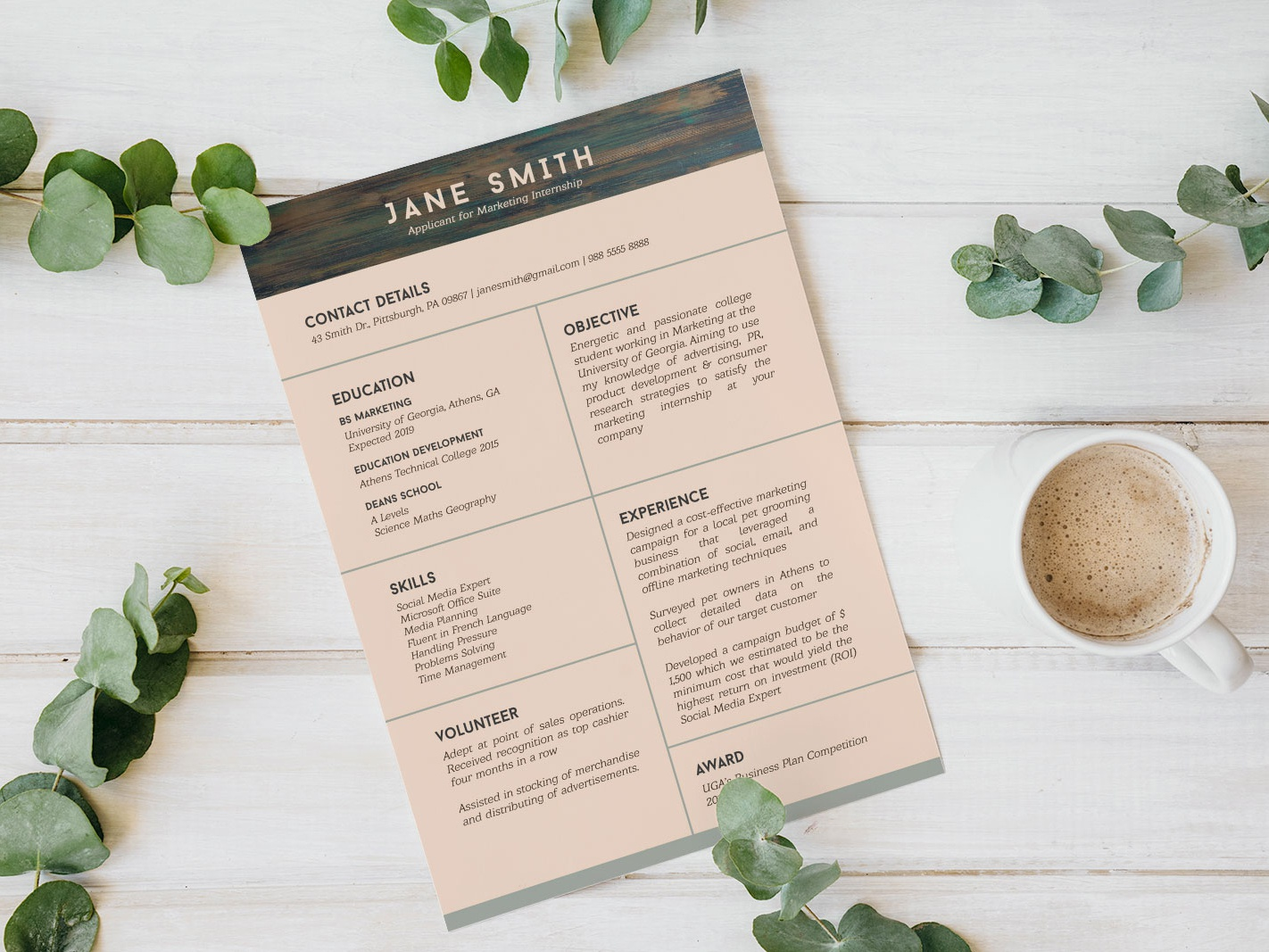 Free Resume Template For Internship Student With No