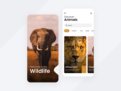 Wildlife Mobile App minimal clean elephant lion africa mobile mobilappdesign mobile ui wildlife wild animals cards interface design ux ui