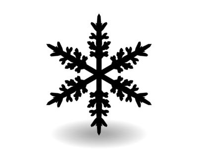 SNOWFLAKE 101
