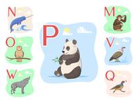 Animal alphabet4 quail vulture narwhal wolf owl panda monkey alphabet animals icon artwork web illustration ui design vector