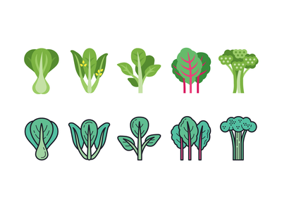 color greens gailan brocollini bok choy fresh salad veganism vegan vegetables greens icon art web ui illustration artwork vector design