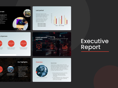 Executive Report Template business marketing report pdf ppt template pitch deck design pitchdeck design pitch deck slidebean presentation template presentation presentation design