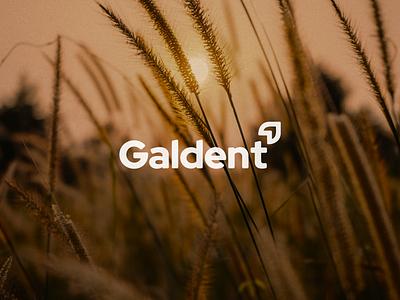 Galdent Logo brand creative typography design icon branding logo