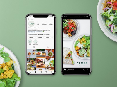 Cress Instagram and Ads branding tampa social media design salad restaurant food stall market hall tampa fl armature works salad art direction icon design icons highlight icons