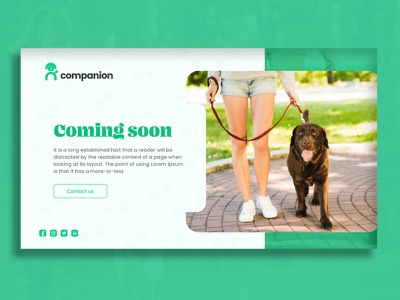 Coming soon page - Dog app animal coming soon landing pages web designer typography layout walking friends dogs uxui ui ux webdesign website