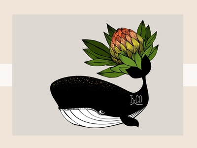 The Whale and the Protea b IxCO