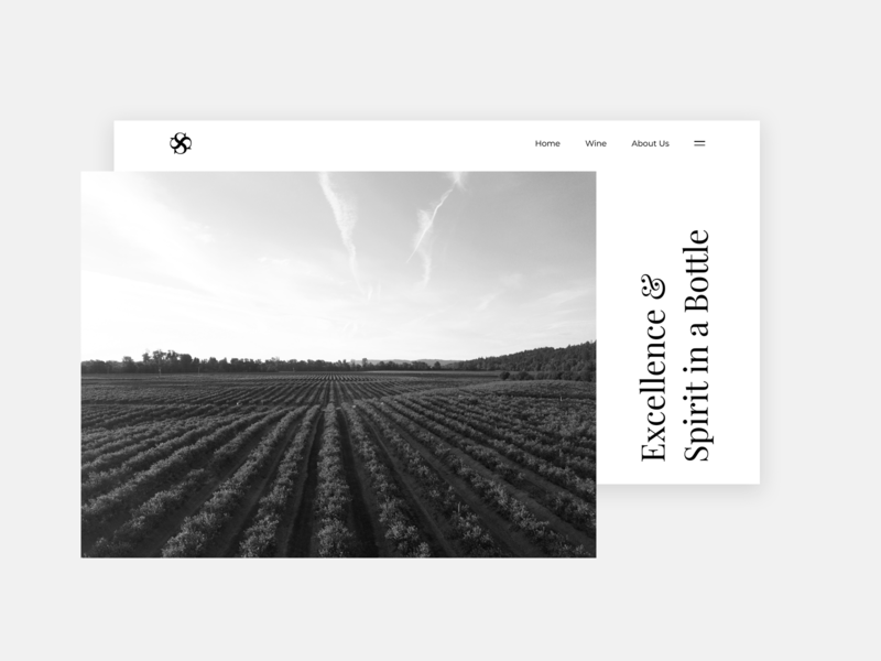 Wine Website and Logo Design typography uidesign ux simple branding design minimal ui winery website logo wine