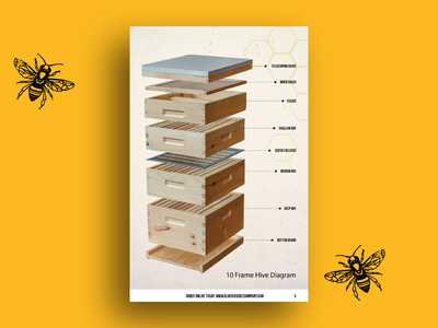 Hive Stack
