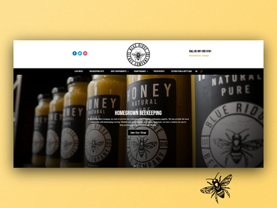 Blue Ridge Bee Company Site graphicdesign ecommerce product web design website design