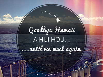Goodbye Hawaii water sailing seal hawaii