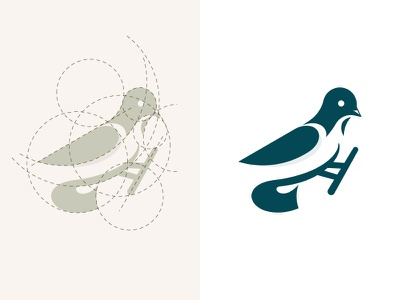 Bird logo and golden ratio logo design symbol mark creative logo dainogo animal logo bird animal circles grid golden ratio bird logo