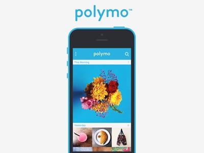 01   polymo   screenshot
