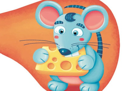 Mouse mouse animals