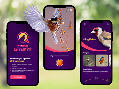 What The Bird? App ux design app design