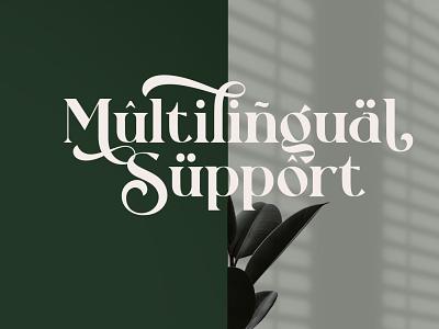 Rollgates Fabulous Font template font branding typography design
