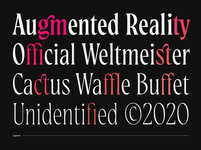Magalie Ligatures display typeface display font serif typeface serif font new typeface new font ligatures font design font type design design typography typeface type