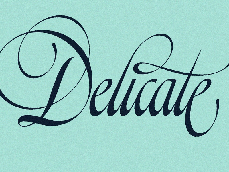 Delicate illustration letters art handmade drawing handlettering design type art hand lettering typography scriptlettering lettering script type
