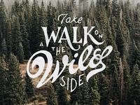 Walk on the wild site