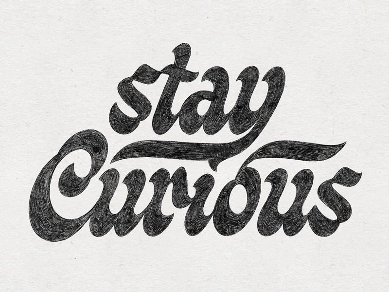 Stay Curious illustration letter script art handmade drawing design hand lettering type design sketch handlettering lettering typography type