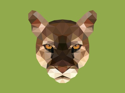 Polygonal face of puma